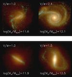 The Horizon-AGN simulation: Morphological Diversity of Galaxies Promoted by AG\ N feedback